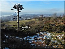 NS4275 : Telecoms mast at Dumbowie Hill by Lairich Rig