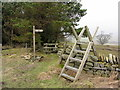 NY6858 : Footpaths at Beaconhill Plantation by Andrew Curtis