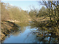 TL8395 : River Wissey before the sluice at Mill Carr by Adrian S Pye