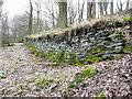 SE0722 : Retaining wall below Dye House Lane by Humphrey Bolton