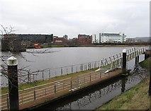 J3473 : Water Sports Pontoon on the River Lagan by Eric Jones