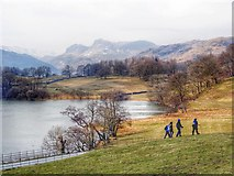 NY3404 : North shore of Loughrigg Tarn by Ian Cunliffe