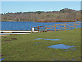 SU8162 : Horseshoe Lake, Yateley by Alan Hunt