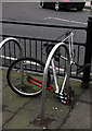 TQ2994 : Abandoned bike by John Salmon