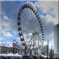SJ8498 : Piccadilly Wheel by David Dixon