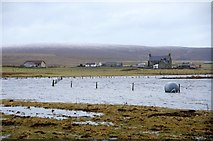 HP6308 : High tide at Ordaal on the south side of Baltasound voe by Mike Pennington