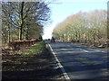 SE9955 : A614 towards Goole  by JThomas