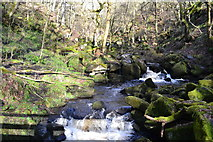SK2579 : Burbage Brook, from the footbridge by David Martin