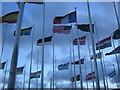 SP1983 : Thicket of flags, National Exhibition Centre by Christopher Hilton
