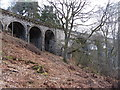 NY6758 : South-west end of Lambley Viaduct by Andrew Curtis