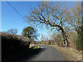 TQ7036 : Bend on Ranters Lane by Robin Webster