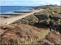NU2422 : The beach and dunes at Dunstan Steads by Clive Nicholson