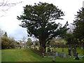 SD4692 : All Saints, Underbarrow: churchyard (4) by Basher Eyre