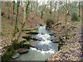 SD5306 : Waterfall on Dean Brook, Dean Wood by Gary Rogers