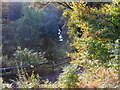 NZ2567 : Jesmond Dene and the Ouse Burn by Anthony Foster
