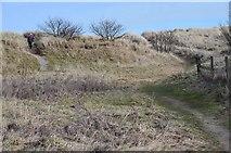NZ2796 : Paths through the dunes, Druridge by Jim Barton