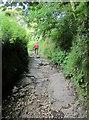 SK1582 : Limestone Way climbing to Cave Dale by Derek Harper