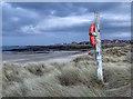 NU2132 : St. Aidan's Dunes by Mick Garratt