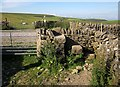 SK1381 : Stile, Limestone Way by Derek Harper