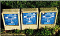 SO5239 : Welsh Water markers in an English city, Hereford by Jaggery