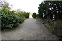 TQ1352 : Path towards the house at Polesden Lacey by Shazz