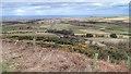 NZ7716 : On Keld Hill by Mick Garratt