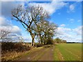 SU3777 : Byway and farmland, East Garston by Andrew Smith