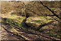 SD7411 : Looking down on a curve in the brook by Ian Greig