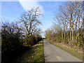NZ2222 : Country lane near Redworth Wood by Oliver Dixon