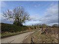 NZ2223 : The lane to Newbiggin Farm by Oliver Dixon