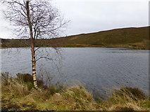 H4984 : Oak Lough, Gortin by Kenneth  Allen
