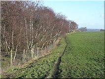 SE0722 : The Calderdale Way, Elland FP003 by Humphrey Bolton
