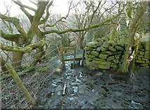 SE0722 : Stile on the Calderdale Way by Humphrey Bolton