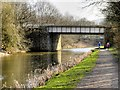 SD8132 : Leeds and Liverpool Canal Bridge#124C by David Dixon
