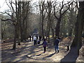 TQ2786 : Path on Hampstead Heath by Malc McDonald