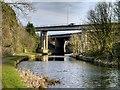 SD8232 : Leeds and Liverpool Canal, Gannow Green Motorway Bridges by David Dixon