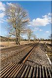 TQ2251 : Towards Lawrence Lane by Ian Capper