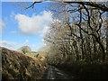 SX3071 : Lane past Caradon Wood by Derek Harper