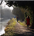 SU5666 : Canal towpath, Woolhampton, Berkshire by Edmund Shaw