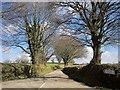 SX3075 : Lane past Clampit by Derek Harper