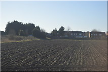 TL4097 : Field on the edge of March by N Chadwick