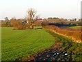 SP7909 : Farmland, Ford by Andrew Smith