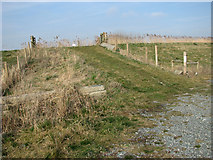 TG3504 : Ramp to the top of the floodbank by Evelyn Simak