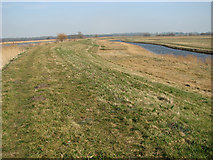 TG3504 : Drainage ditch in the marshes by Evelyn Simak