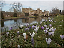 ST3505 : Forde Abbey: across the Long Pond by Chris Downer