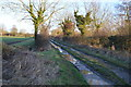 TG0312 : Footpath to Stone St by N Chadwick