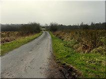 H6160 : Greenhill Road, Ballymackilroy by Kenneth  Allen