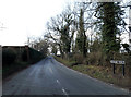 TM2483 : Rushall Road, Harleston by Adrian Cable