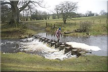 NZ0637 : Ford and Stepping Stones at Wolsingham by John Walton