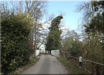TM2281 : Mill Lane, Needham by Adrian Cable